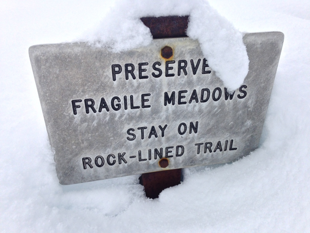 Buried signs