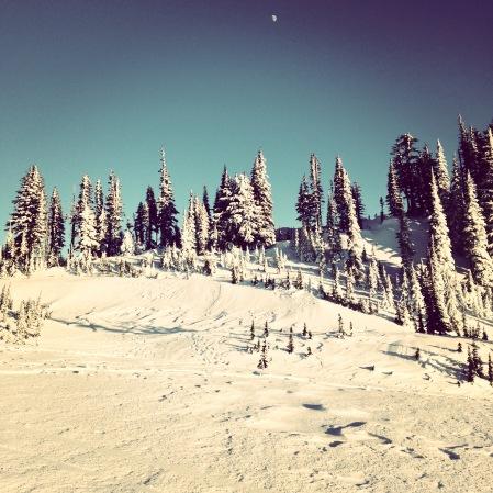 Moon, sky, snow