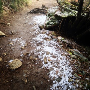 Snow along the side of the trail
