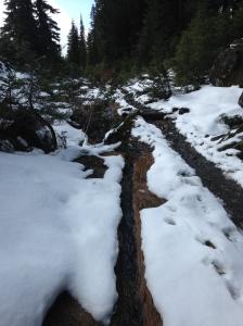 Slushy, snowy trail