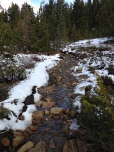 Walking through a stream