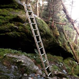 Ladder ravine!