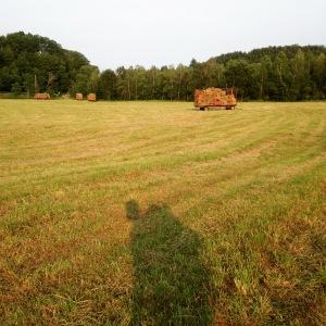 Hay field!