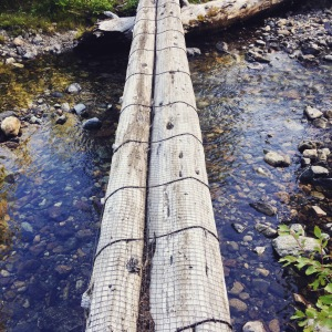 Cush log crossing on the so called abandoned trail. Looks cush to me
