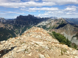 Looking north from Alta summit