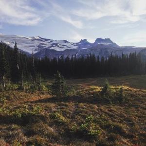 Marmot meadows