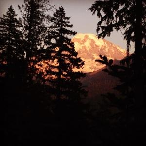Rainier illuminated in alpenglow