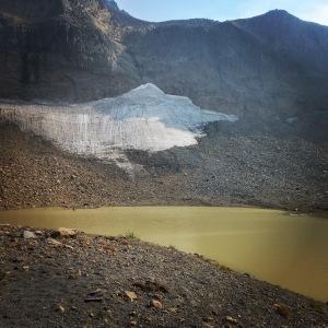 Another sarvent glacier